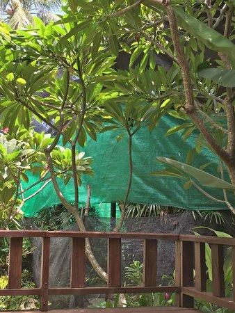 Green Papaya Resort : Bache verte des travaux à trois mètre face à notre chambre ! la num 6  ..