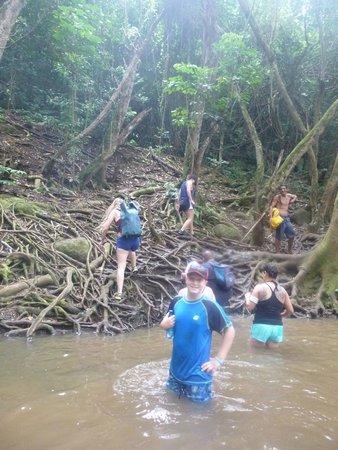 Kayak Wailua : Hiking to the falls