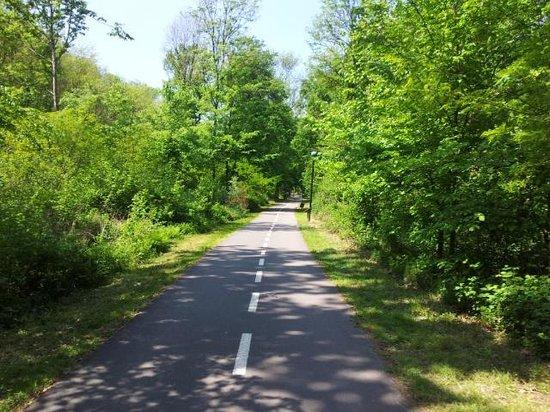 Lake Varese bicycle trail: pista