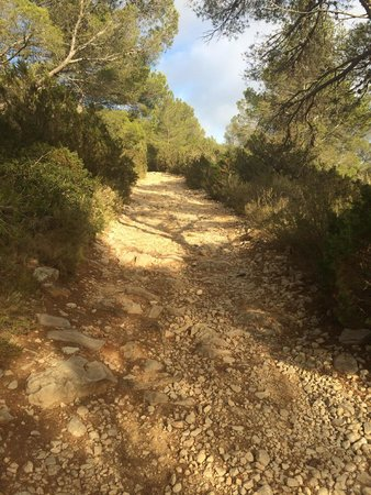 Hacienda Na Xamena: Mountain path, Ibiza