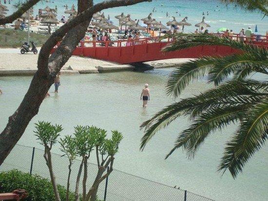Aparthotel Orquidea Playa: Puutarhasta suoraan merelle