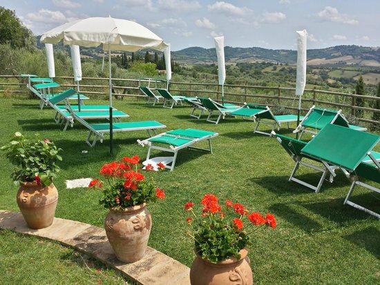 Hotel Saturno Fonte Pura: lettini ed ombrelloni a bordo piscina