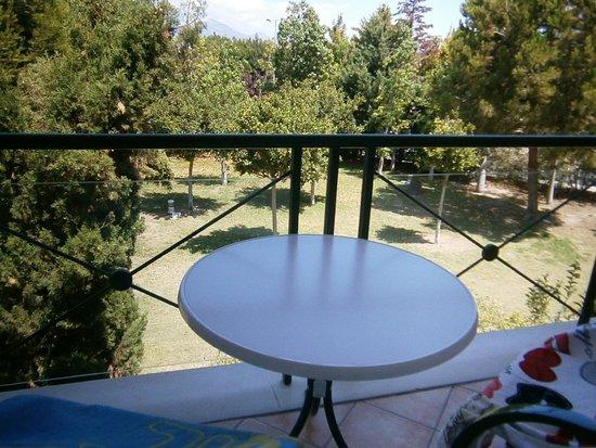 Hotel Alicante Golf: Vista desde la terraza. Justo detrás de esas plantas hay una calle algo transitada y  zona de oc