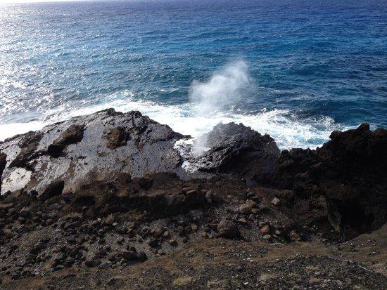 Oahu Spot Tours: Beautiful spot!