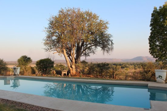 Sanctuary Chichele Presidential Lodge: The garden