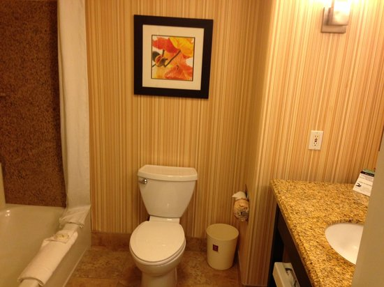 Comfort Suites Turlock: Bathroom