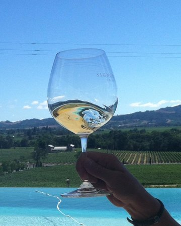 Signorello Estate Winery : A swirl of Napa Valley