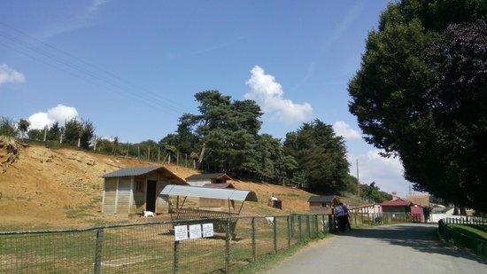 Papea Parc: mini ferme