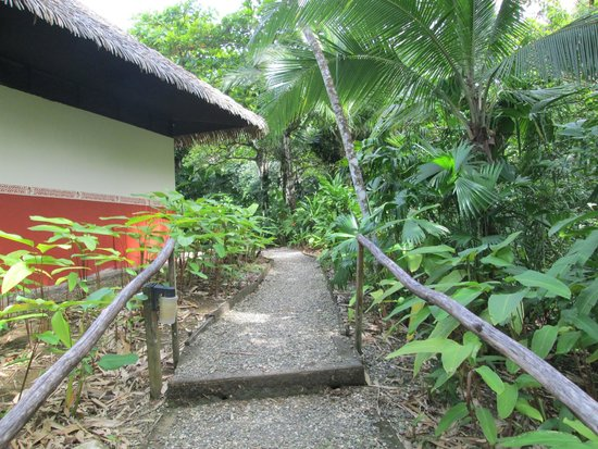 Lapa Rios Ecolodge Osa Peninsula: trail to bungalow