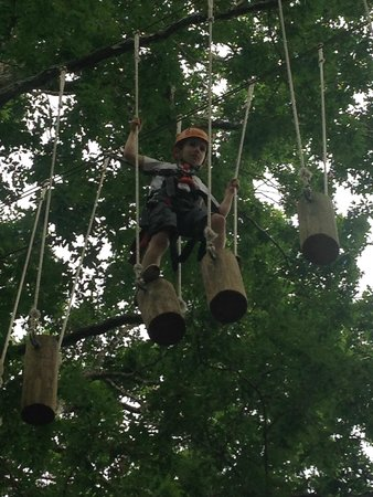 Asheville Zipline Canopy Adventures: Yellow Course