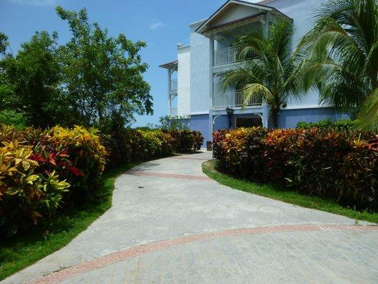 Memories Flamenco Beach Resort : grounds