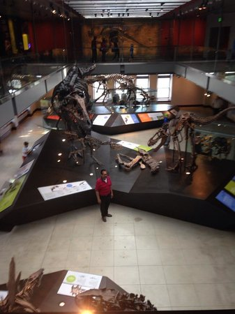 Natural History Museum of Los Angeles County: dino hall