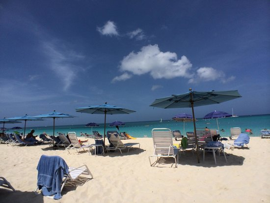 The Westin Grand Cayman Seven Mile Beach Resort & Spa: Great beach, calm waters
