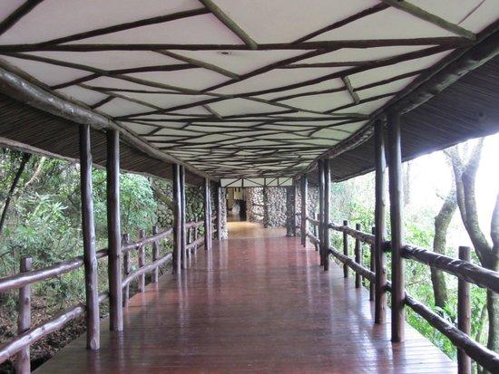 Ngorongoro Serena Safari Lodge: per arrivare alle camere