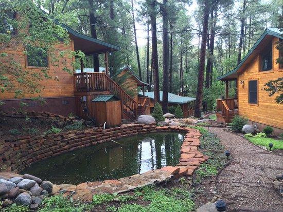 Ruidoso Lodge Cabins: Great view!