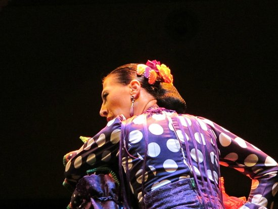 Museo del Baile Flamenco: Professional Flamenco