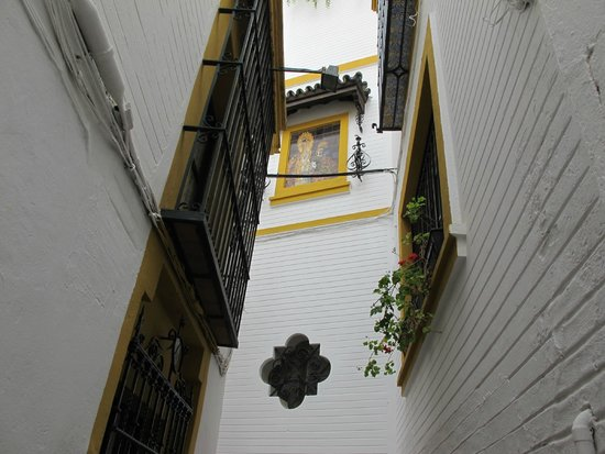 Barrio Santa Cruz : Need to go back - interesting part of Old Seville