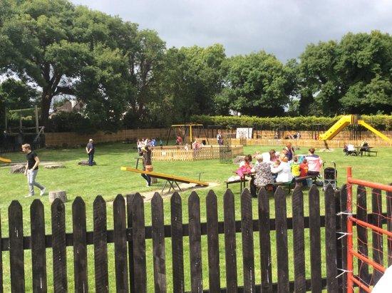 Athlone Springs Hotel: Gleender Pet Farm - 10 mins drive away - Brilliant for kids