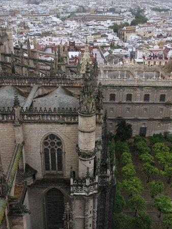 Cathédrale Notre-Dame du Siège de Séville : From the Giraldi Tower