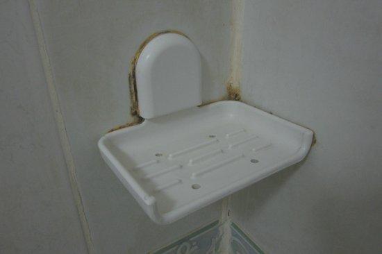 Manila Airport Hotel: Shower