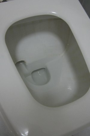 Manila Airport Hotel: Dirty Toilet