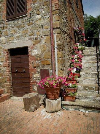 Isola Maggiore: casa e fiori