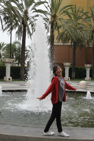 Holiday Inn Hotel & Suites Anaheim (1 BLK/Disneyland): Lovely fountains and gardens