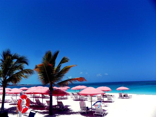 Ocean Club Resort : Awesome Ocean Club propert on Grace Bay.