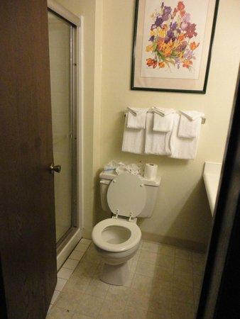 Breakers Hotel and Condo Suites: Bathroom. No tub
