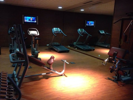 Novotel Casablanca City Center: Gym. Bike doesn't work.