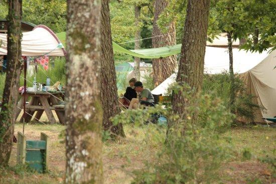 Camping Huttopia Rillé : vue de notre emplacement