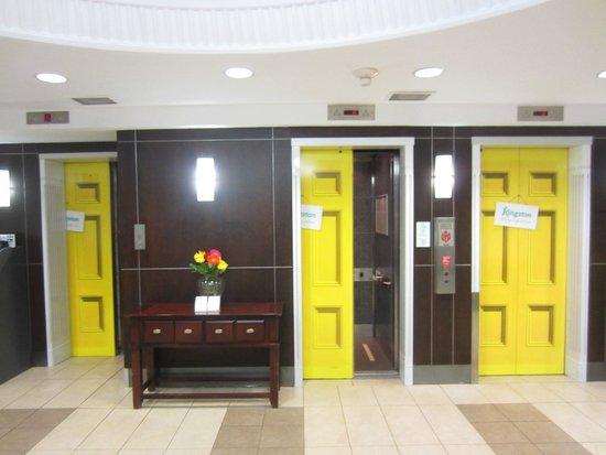 Holiday Inn Kingston - Waterfront: elevator door