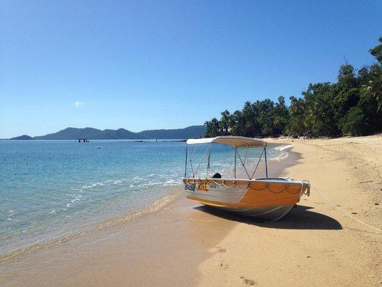Mission Beach Boat Hire: Bedarra Island.