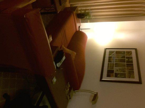 Residence Inn Washington, DC/Capitol : nice comfy couch