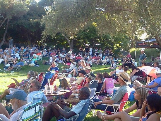 Rodney Strong Vineyards : A fun relaxing venue.  Bring your picnic!