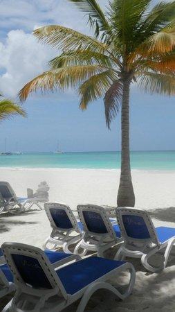 Viva Wyndham Dominicus Beach: isola Saona