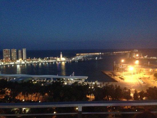 AC Hotel Malaga Palacio : Vistas AC Málaga Palacio