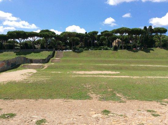 Circus Maximus: CIRCONDATO DA ALBERI..