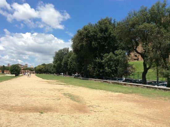 Circus Maximus: UN ALA DEL CIRCO