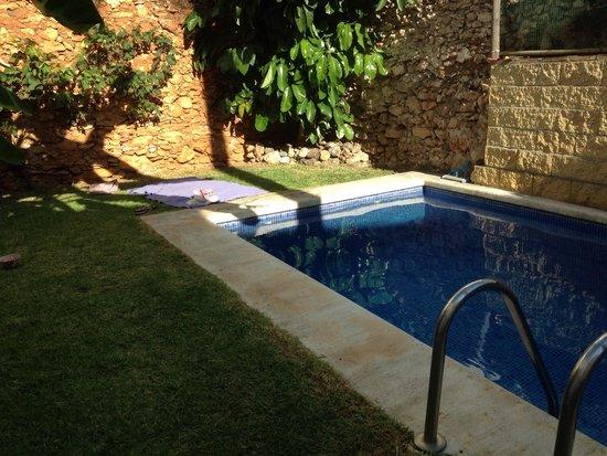 Hostal Lorca: Il giardino