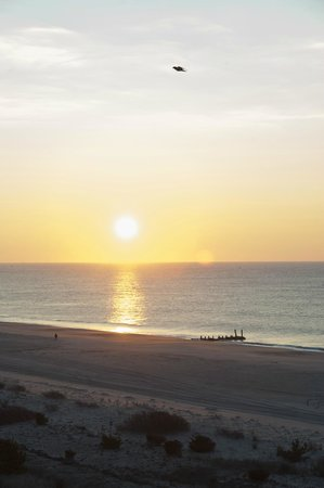 The Grand Hotel: The perfect Cape May Sunrise, great views from the Grand  Hotel