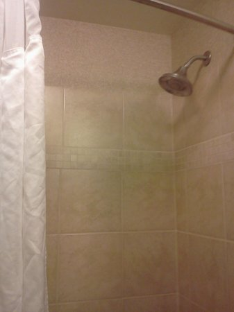 Holiday Inn Express Hotel & Suites Madison-Verona : Guest Shower