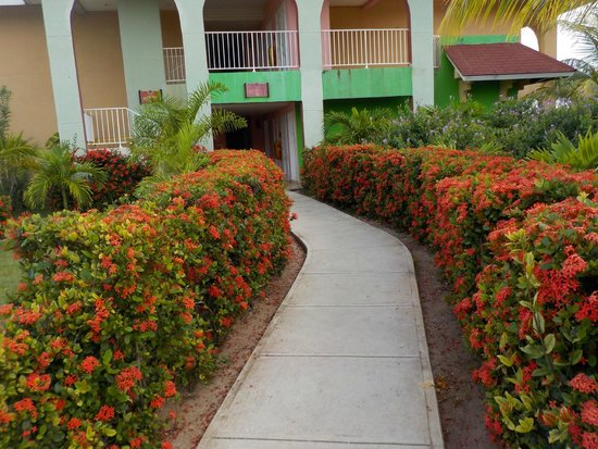 Memories Caribe Beach Resort: entrance to bungalow