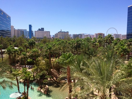 Hard Rock Hotel and Casino: View from the room