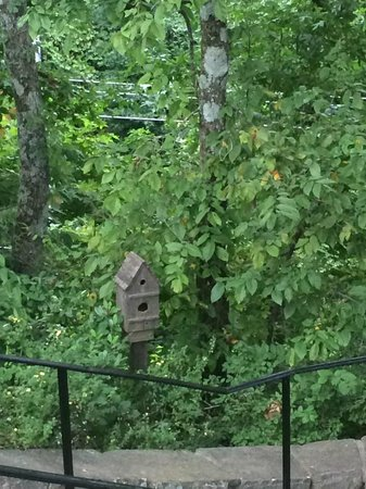 Vulcan Park and Museum: Birdhouse on trail at Vulcan Park