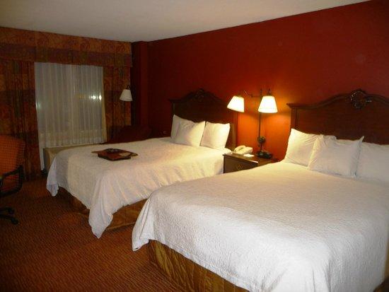 Comfort Inn: Room-Double Bed
