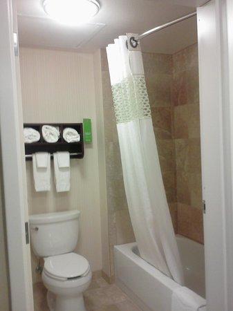 Hampton Inn and Suites Madison West: Bathroom