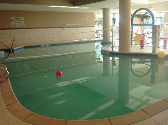 Hampton Inn and Suites Madison West : Pool