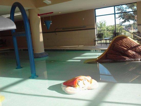Hampton Inn and Suites Madison West : Pool with Kid Area