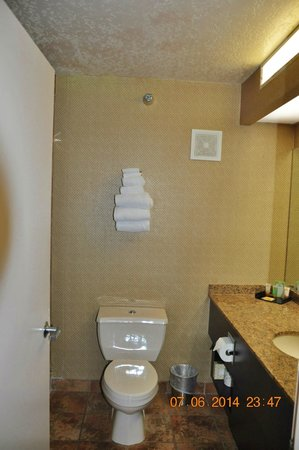 Luxor Hotel & Casino : Bathroom